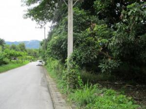 ที่ดิน 60000 เชียงใหม่ เมืองเชียงใหม่ ช้างเผือก
