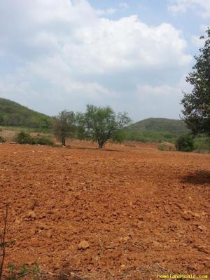 ที่ดิน 350,000 สระบุรี มวกเหล็ก หนองย่างเสือ