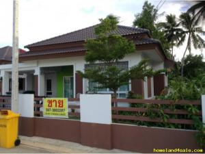 บ้านเดี่ยว 150000 ชุมพร เมืองชุมพร นาชะอัง