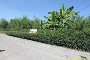 ที่ดิน 5580000 นนทบุรี ปากเกร็ด บ้านใหม่
