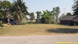 ที่ดิน 350000 ราชบุรี บ้านโป่ง หนองปลาหมอ