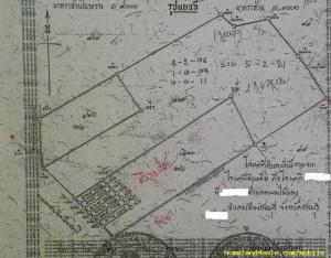 ที่ดิน 17ล้าน/ไร่ ชลบุรี เมืองชลบุรี หนองไม้แดง
