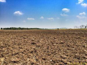 ที่ดิน 230000 กาญจนบุรี ท่าม่วง รางสาลี่