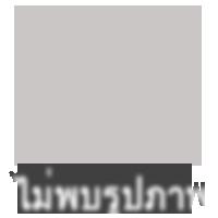 ทาวน์เฮาส์ 1700000 เชียงใหม่ เมืองเชียงใหม่ ป่าแดด