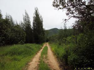 ที่ดินภูเขา 2000000 เพชรบุรี ชะอำ ห้วยทรายเหนือ