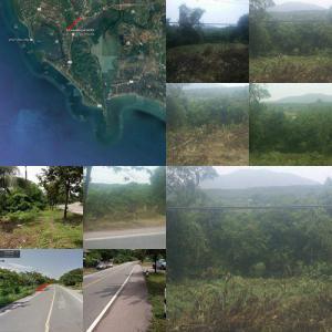 ที่ดิน 12750000 จันทบุรี ท่าใหม่ คลองขุด