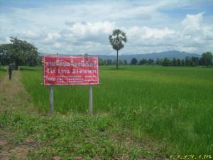 ที่ดิน 2500000 พิษณุโลก นครไทย หนองกะท้าว