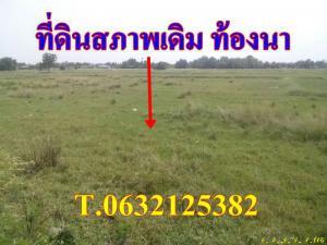 ที่ดิน 1600000 ชลบุรี พานทอง หนองหงษ์