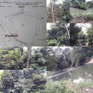 ที่ดิน 8359500 จันทบุรี มะขาม ปัถวี