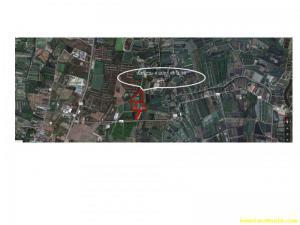 ที่ดิน 65000000 นครปฐม เมืองนครปฐม ดอนยายหอม