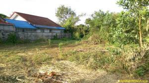 ที่ดิน 660000 จันทบุรี เมืองจันทบุรี ท่าช้าง