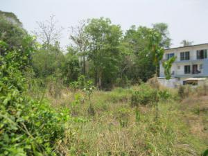 ที่ดิน 4200000 เชียงใหม่ เมืองเชียงใหม่ ช้างเผือก