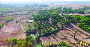 ที่ดิน 4500000 เชียงใหม่ จอมทอง บ้านหลวง