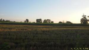 ที่ดิน 200000 บุรีรัมย์ กิ่งอำเภอบ้านด่าน บ้านด่าน