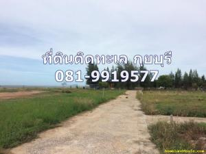 ที่ดิน 20000 ประจวบคีรีขันธ์ กุยบุรี บางบัวทอง