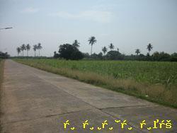 ที่ดิน 1000000 กาญจนบุรี ท่ามะกา ท่ามะกา