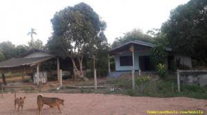 บ้านพร้อมที่ดิน 550000 ฉะเชิงเทรา คลองตะเกรา ท่าตะเกียบ