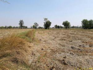 ที่ดิน 230000 บุรีรัมย์ เมืองบุรีรัมย์ หนองตาด