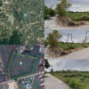 ที่ดิน 35600000 ชลบุรี บ้านบึง คลองกิ่ว