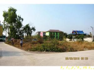 ที่ดิน 4300000 เพชรบุรี เมืองเพชรบุรี โพไร่หวาน
