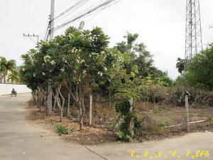 ที่ดิน 31,000ตารางวา เพชรบุรี ชะอำ บางเก่า