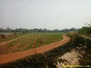 ที่ดิน 990000 กาญจนบุรี เมืองกาญจนบุรี เกาะสำโรง