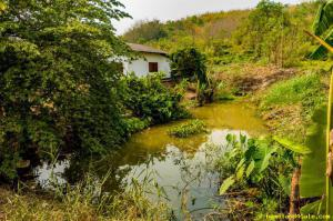 บ้านเดี่ยว 390,000 เชียงราย แม่จัน ท่าข้าวเปลือก