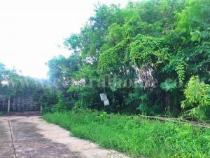 ที่ดิน 3850000 กรุงเทพมหานคร เขตตลิ่งชัน ฉิมพลี