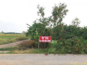 ที่ดิน 480000 นครนายก บ้านนา บ้านพริก