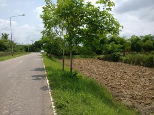 ที่ดิน ไร่ละ 3 ล้าน นครพนม เมืองนครพนม ในเมือง