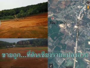 ที่ดิน 1350000 เชียงราย เมืองเชียงราย ดอยฮาง