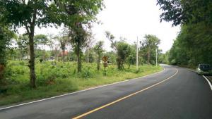 ที่ดิน 10000000 จันทบุรี เมืองจันทบุรี ท่าช้าง