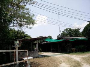บ้านเดี่ยว 2400000 ชลบุรี บ้านบึง คลองกิ่ว