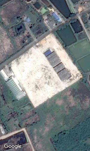 โรงงาน 50000000 ชลบุรี เมืองชลบุรี คลองตำหรุ