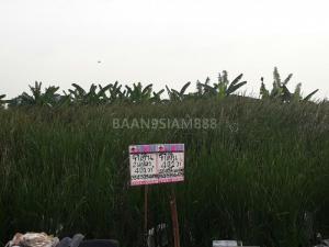 ที่ดิน 7218000 นนทบุรี บางใหญ่ บางใหญ่