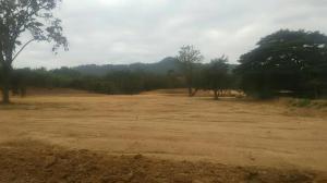 ที่ดิน 42000000 สระบุรี มวกเหล็ก มวกเหล็ก