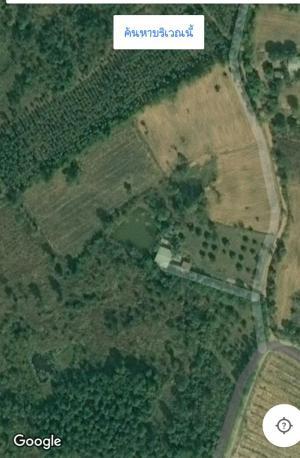 บ้านพร้อมที่ดิน 200000/ไร่ เลย ภูกระดึง ภูกระดึง