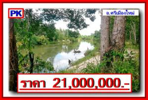 ที่ดิน 21000000 อุบลราชธานี ศรีเมืองใหม่ คำไหล