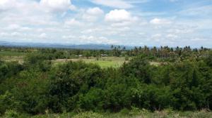 ที่ดิน 6200000 เพชรบุรี ชะอำ ห้วยทรายเหนือ