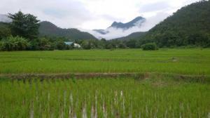 ที่ดิน 30000000 แม่ฮ่องสอน เมืองแม่ฮ่องสอน ปางหมู
