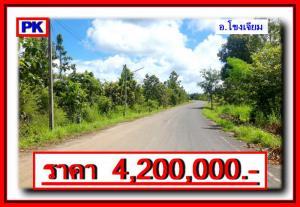 ที่ดิน 4200000 อุบลราชธานี โขงเจียม โขงเจียม