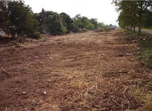 ที่ดิน 600000 ปทุมธานี หนองเสือ หนองสามวัง