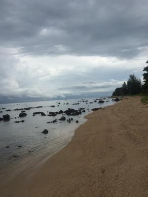 ที่ดิน 2,500,000 ชุมพร ปะทิว ชุมโค
