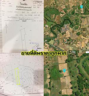 ที่ดิน ไร่ละ 120,000 บาท ชัยภูมิ เมืองชัยภูมิ ลาดใหญ่