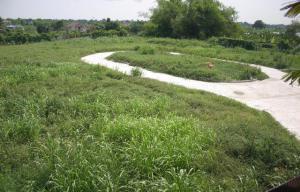 ที่ดิน 3290000 ปทุมธานี เมืองปทุมธานี สวนพริกไทย