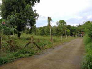 ที่ดิน 2500000 จันทบุรี เมืองจันทบุรี ท่าช้าง