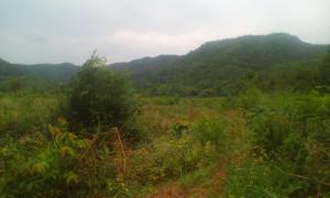 ที่ดินภูเขา ไร่ละ1ล้าน เพชรบุรี หนองหญ้าปล้อง ยางน้ำกลัดเหนือ