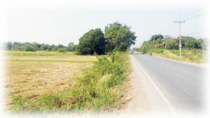 ที่ดิน 2,000,000 สระบุรี เสาไห้ ศาลารีไทย