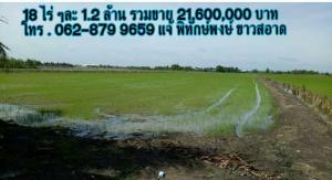 ที่ดิน 21,600,000 นนทบุรี ไทรน้อย ไทรน้อย