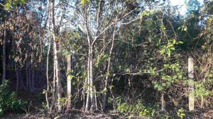 ที่ดิน 600000 นครพนม ธาตุพนม ธาตุพนม